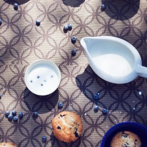Blueberry Muffin Keto Friendly Reccipe